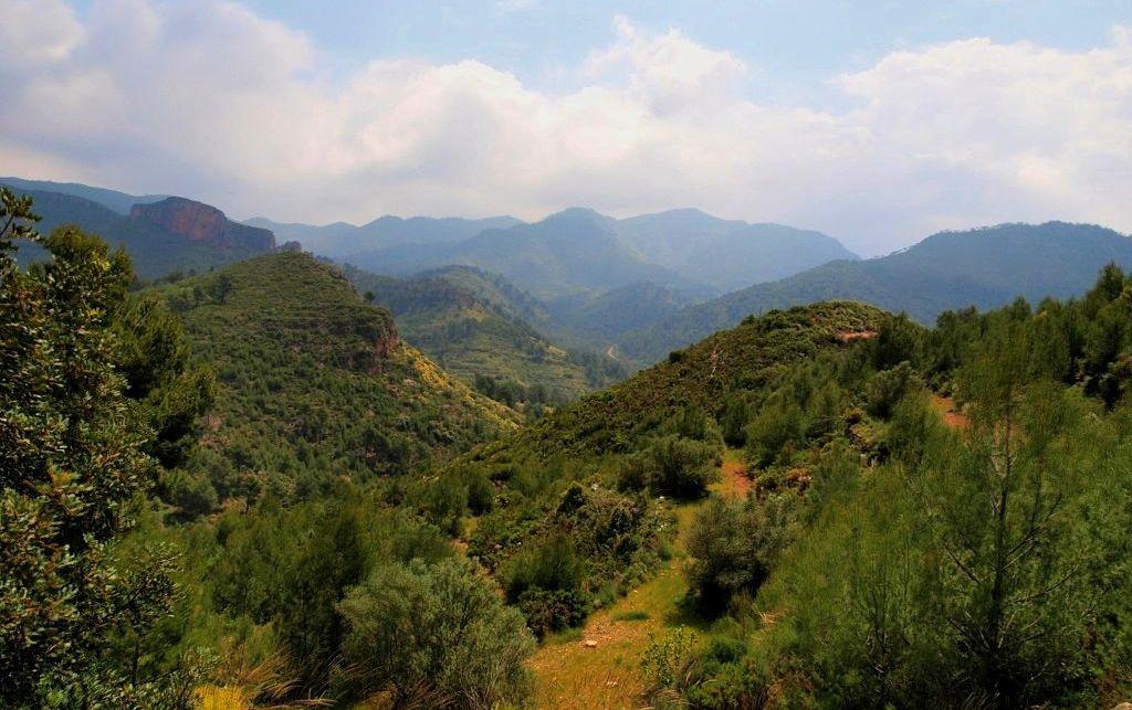 La Sierra Calderona